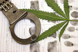 Will I Go to Jail for Marijuana Possession in Florida?